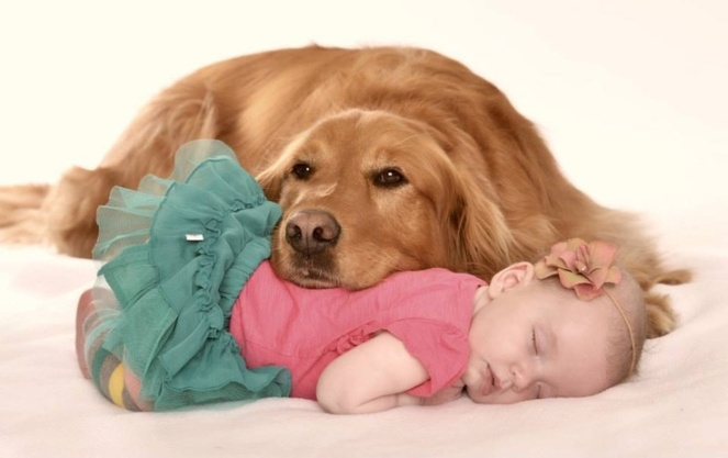 newborn_dog_baby